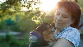 Η κυρία αγαπά ένα σκυλί απόθεμα βίντεο