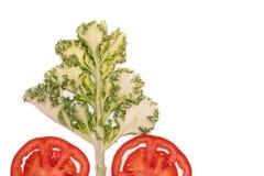 Η κόκκινα ώριμα ντομάτα φετών και το δέντρο λάχανων απομόνωσαν τη τοπ άποψη, έννοια φρούτων και λαχανικών Στοκ Εικόνες