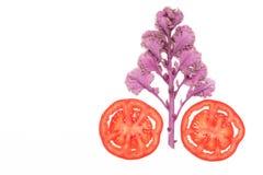 Η κόκκινα ώριμα ντομάτα φετών και το δέντρο λάχανων απομόνωσαν τη τοπ άποψη, έννοια φρούτων και λαχανικών Στοκ φωτογραφίες με δικαίωμα ελεύθερης χρήσης
