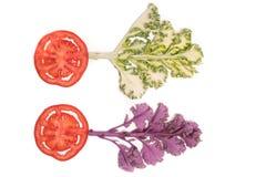 Η κόκκινα ώριμα ντομάτα φετών και το δέντρο λάχανων απομόνωσαν τη τοπ άποψη, έννοια φρούτων και λαχανικών Στοκ Φωτογραφίες