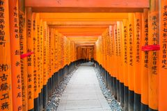 η κόκκινη διάβαση πεζών πυλών torii στη λάρνακα taisha inari fushimi στις KY Στοκ Φωτογραφίες