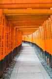 η κόκκινη διάβαση πεζών πυλών torii στη λάρνακα taisha inari fushimi στις KY Στοκ εικόνες με δικαίωμα ελεύθερης χρήσης