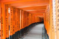η κόκκινη διάβαση πεζών πυλών torii στη λάρνακα taisha inari fushimi στις KY Στοκ Εικόνα