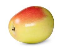 Η κόκκινη και κίτρινη Apple που περιστρέφεται Στοκ εικόνα με δικαίωμα ελεύθερης χρήσης