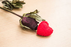 Η κόκκινη καρδιά με ξηρό αυξήθηκε Στοκ Εικόνες