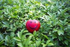 Η κόκκινη καρδιά σε πράσινο βγάζει φύλλα Στοκ φωτογραφία με δικαίωμα ελεύθερης χρήσης