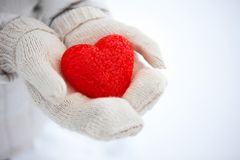 Η κόκκινη κατασκευασμένη καρδιά βρίσκεται στους φοίνικες βαλεντίνος ημέρας s στοκ εικόνα