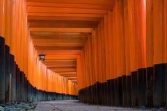 Η κόκκινη πορεία διάβασης πεζών πυλών torii στη λάρνακα taisha inari fushimi Στοκ Εικόνες