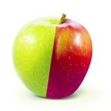 Η κόκκινη πράσινη Apple που απομονώνεται με το ψαλίδισμα της πορείας Στοκ φωτογραφία με δικαίωμα ελεύθερης χρήσης