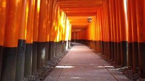 Η κόκκινη πύλη της λάρνακας shinto στην Ιαπωνία, η περισσότερη λάρνακα έλξης στο Κιότο - κινούμενη κάμερα απόθεμα βίντεο