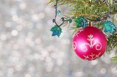 Η κόκκινη σφαίρα Χριστουγέννων σε έναν κλάδο χριστουγεννιάτικων δέντρων πέρα από το θολωμένο λαμπρό υπόβαθρο, κλείνει επάνω Στοκ Φωτογραφία