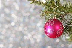 Η κόκκινη σφαίρα Χριστουγέννων σε έναν κλάδο χριστουγεννιάτικων δέντρων πέρα από το θολωμένο λαμπρό υπόβαθρο, κλείνει επάνω Στοκ Εικόνα