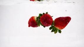 Η κόκκινη φράουλα περιέρχεται υπέροχα στο νερό με τις φυσαλίδες Τηλεοπτικός beryy στο απομονωμένο υπόβαθρο σε σε αργή κίνηση φιλμ μικρού μήκους