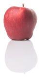 Η κόκκινη Apple ΙΙΙ Στοκ Εικόνες