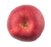 Η κόκκινη Apple ΙΙ Στοκ εικόνα με δικαίωμα ελεύθερης χρήσης