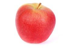 Η κόκκινη Apple με τις πτώσεις νερού Στοκ Φωτογραφία