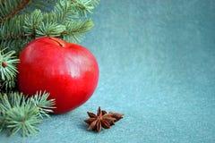 Η κόκκινη Apple με το γλυκάνισο και το έλατο αστεριών στο υπόβαθρο βελούδου στοκ φωτογραφίες με δικαίωμα ελεύθερης χρήσης