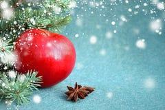 Η κόκκινη Apple με το γλυκάνισο και το έλατο αστεριών στο υπόβαθρο βελούδου στοκ εικόνα