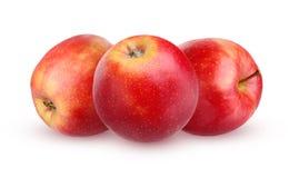 Η κόκκινη Apple που απομονώνεται στο άσπρο υπόβαθρο με τη σκιά Στοκ φωτογραφία με δικαίωμα ελεύθερης χρήσης