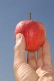 Η κόκκινη Apple Στοκ φωτογραφίες με δικαίωμα ελεύθερης χρήσης