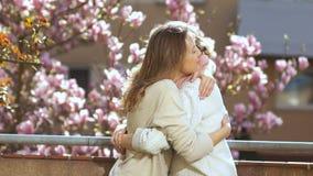 Η κόρη αγκαλιάζει μια ηλικιωμένη μητέρα στα πλαίσια ενός magnolia άνθησης Η μητέρα και η κόρη συγχαίρουν κάθε μια φιλμ μικρού μήκους