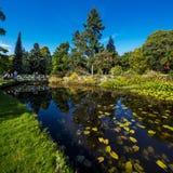 Η κύρια λίμνη των εθνικών βοτανικών κήπων στο Δουβλίνο στοκ εικόνες