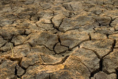 Η κλιματική αλλαγή, το έδαφος είναι ξηρά, ξηρασία, ραγισμένο έδαφος Στοκ Εικόνα