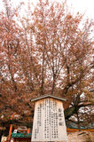 Η λάρνακα Heian στο Κιότο, Ιαπωνία στοκ εικόνα με δικαίωμα ελεύθερης χρήσης