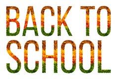 Η λέξη πίσω στο σχολείο που γράφτηκε με το λευκό φύλλων απομόνωσε το υπόβαθρο, έμβλημα για την εκτύπωση, δημιουργική απεικόνιση χ Στοκ Φωτογραφία