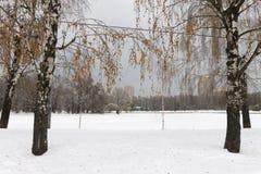 Η λίμνη ήταν παγωμένη και καλυμμένη με το χιόνι κρύο Στοκ εικόνες με δικαίωμα ελεύθερης χρήσης