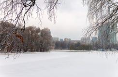 Η λίμνη ήταν παγωμένη και καλυμμένη με το χιόνι κρύο Στοκ εικόνα με δικαίωμα ελεύθερης χρήσης