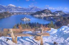 Η λίμνη που αιμορραγήθηκε, η εκκλησία της υπόθεσης της Virgin Mary, αιμορράγησε το νησί, Σλοβενία - δείτε επάνω από το νησί στοκ εικόνες