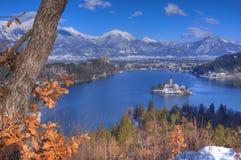 Η λίμνη που αιμορραγήθηκε, η εκκλησία της υπόθεσης της Virgin Mary, αιμορράγησε το νησί, Σλοβενία - δείτε επάνω από το νησί στοκ φωτογραφία