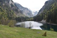 Η λίμνη Susicko και η κοιλάδα Susica στοκ εικόνες