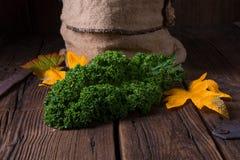 Η λαχανώδης κράμβη του Kale Στοκ εικόνα με δικαίωμα ελεύθερης χρήσης