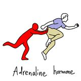 Η λειτουργία μεταφοράς της ορμόνης αδρεναλίνης είναι να γίνει το ανθρώπινο σώμα RU ελεύθερη απεικόνιση δικαιώματος