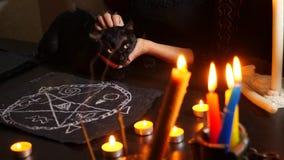 Η μάγισσα είναι ένας αφηγητής τύχης με την κινηματογράφηση σε πρώτο πλάνο κεριών Ένα μαγικό τελετουργικό με μια μαύρη γάτα divina απόθεμα βίντεο