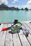 η μάσκα κολυμπά με αναπνε&upsi Στοκ εικόνα με δικαίωμα ελεύθερης χρήσης