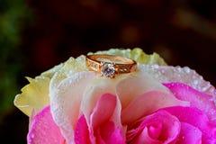 Η μακρο κινηματογράφηση σε πρώτο πλάνο αυξήθηκε με τις πτώσεις δροσιάς και το όμορφο λαμπιρίζοντας δαχτυλίδι διαμαντιών Στοκ φωτογραφίες με δικαίωμα ελεύθερης χρήσης