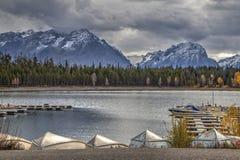 Η μαρίνα στις διακοπές Yellowstone στοκ φωτογραφίες με δικαίωμα ελεύθερης χρήσης
