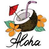 Η μαύρα περίληψη και το χρώμα επιγραφής καρύδων και aloha γεμίζουν τη διανυσματική εικόνα απεικόνιση αποθεμάτων