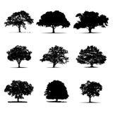 η μαύρη απεικόνιση ανασκόπησης σκιαγραφεί το διανυσματικό λευκό δέντρων Στοκ Φωτογραφίες