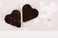 η μαύρη γκρίζα κυρία κόμη χαλαρώνει το τσάι Στοκ φωτογραφίες με δικαίωμα ελεύθερης χρήσης