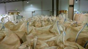 Η μεγάλη αποθήκη εμπορευμάτων για την αποθήκευση σιταριού, προϊόντα σ απόθεμα βίντεο