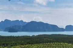 Η μεγάλη περιοχή βουνών είναι περικοπή του δέντρου για αυξάνεται τις φυτείες ελαιοφοινίκων, αποδάσωση στοκ εικόνες