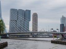 Η μεγαλύτερη οικοδόμηση των Κάτω Χωρών δεξιά πίσω από το bri Erasmus Στοκ εικόνα με δικαίωμα ελεύθερης χρήσης