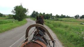 Η μεταφορά αλόγων φέρνει το κάρρο ροδών λουριών, του χωριού δρόμος απόθεμα βίντεο