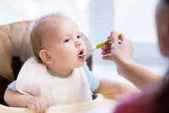 Η μητέρα δίνει τις παιδικές τροφές από ένα κουτάλι Στοκ εικόνες με δικαίωμα ελεύθερης χρήσης
