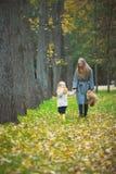 Η μητέρα και λίγη κόρη ξανθές με Teddy αντέχουν στο πάρκο φθινοπώρου, κίτρινες ζωές γύρω Στοκ Φωτογραφία