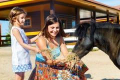 Η μητέρα και η κόρη ταΐζονται με τα πόνι αχύρου στο αγρόκτημα Στοκ Εικόνες